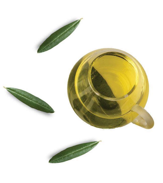 homepage-olive-oil