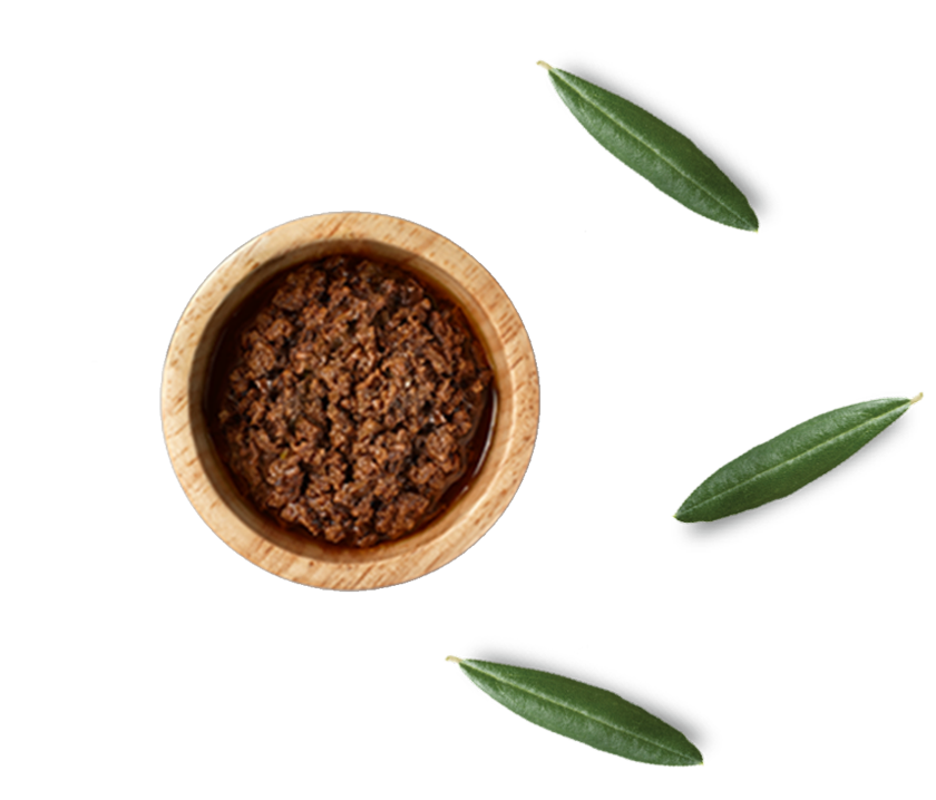 Olive Paste Packing